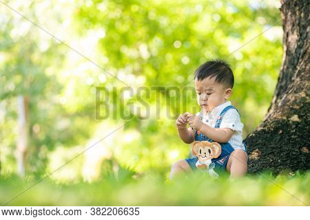 1 Year Toddler Baby Boy Sitting On Tree In City Public Park Sunny Day