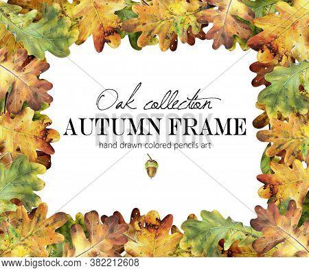 Autumn Oak Colored Pencil Frame, Border, Wreath. Yellow, Orange Leaves, Botanic Composition.