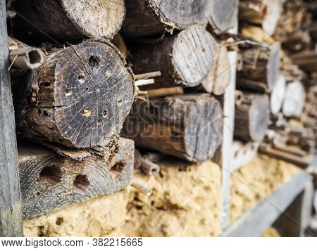 Stacks Of Lumber With Drilled Narrow Holes Used As Bee Hotel For Hibernating