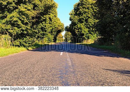 Scenic  Rural Landscape Of Old Asphalt Road With Trees In Summer Sunny Day. Scenic Natural Tunnel Of