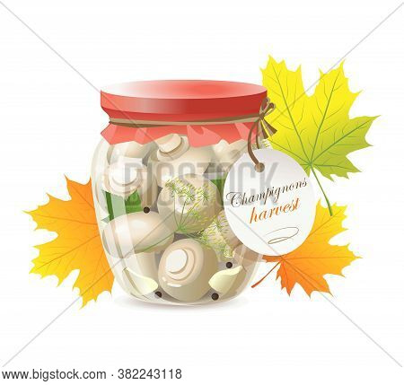 Pickled Champignon Mushrooms In A Glass Jar. Champignon Harvest.