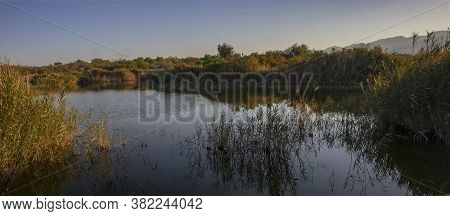 A Natural Pond Surrounded By Vegetation In A Birdwatching Park Near Eilat, Israel