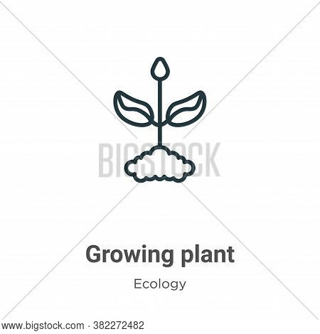Growing plant icon isolated on white background from ecology collection. Growing plant icon trendy a
