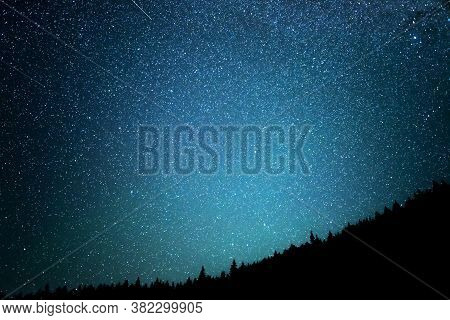 Night Starry Sky Against The Background Of The Fir Forest.