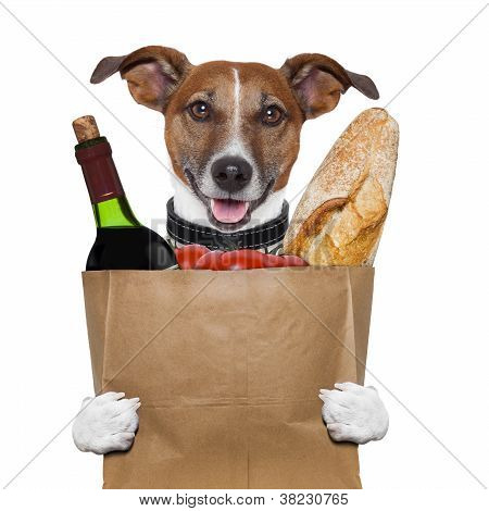 grocery bag dog wine tomatoes bread holding it poster