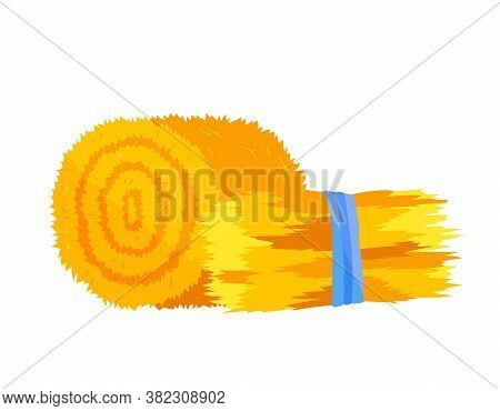 Roll Of Hay. Round Hay Bales. Flat Dried Haystack Isolated On White Background. Farming Haymow Bale