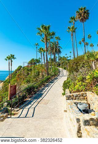 Walk Path And Palm Trees By The Sea In Laguna Beach Shore. California, Usa
