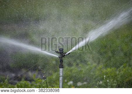 Sprinker Irrigation System Spraying Water On Field - Close Up