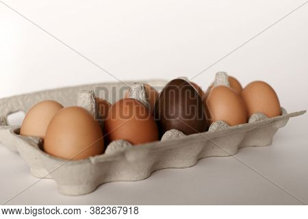 Chicken Eggs In An Egg Container. Nine Chicken Eggs And One Chocolate Egg In An Egg Container. Choco