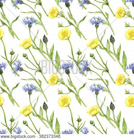 Watercolor Seamless Pattern With Drawing Flowers, Bleu Cornflowers And Yellow Buttercups, Floral Bac