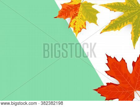 Autumn Leaf On A Blue And White Background. Minimal Concept. Place For Text. Great For Sale, Party I