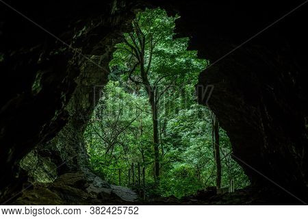 Exit Of Big Karst Cave. The Nature Of The Sochi National Park Of Boxwood Trees. Emerald Mountain In