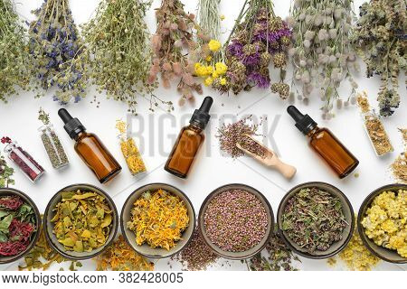 Bowls Of Dry Medicinal Herbs, Healing Plants Bunches, Bottles Of Dry Medicinal Plants And Dropper Bo