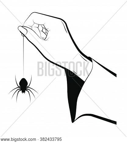 Female Hand Of Sorceress Holds A Huge Spider On Web. Celebration Of Halloween In Fancy Dress. Magic