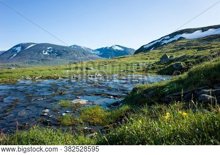 Swedish Lapland landscape with small river and green meadow. Arctic environment of Scandinavia in summer sunny day with blue sky. Nordkalottruta Arctic hiking Trail in northern Sweden