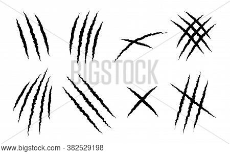 Set Of Claw Scratches Of Animal On White Background - Vector Illustration.