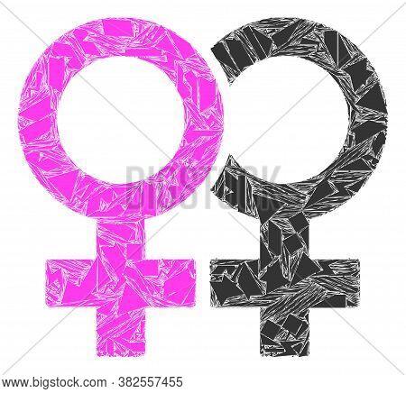 Shards Mosaic Lesbian Couple Symbol Icon. Lesbian Couple Symbol Mosaic Icon Of Shards Items Which Ha