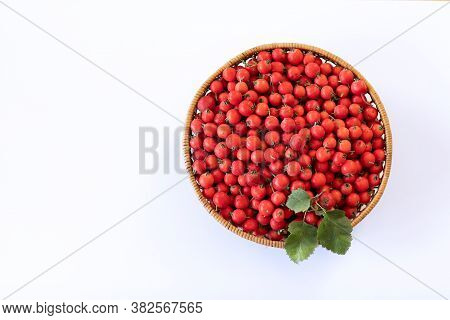 Red Berries Of Fresh Hawthorn In The Basket On White Background. Copy Space.