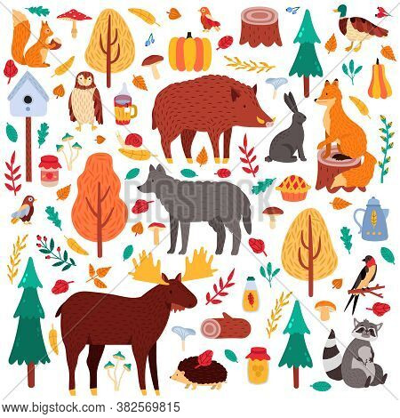 Cartoon Autumn Animals. Cute Woodland Birds And Animals, Moose Duck Wolf And Squirrel, Wild Woods Fa
