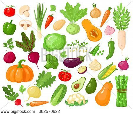 Cartoon Vegetables. Vegan Veggies Food, Tomato, Pumpkin, Zucchini And Carrot, Vegetarian Fresh Raw V