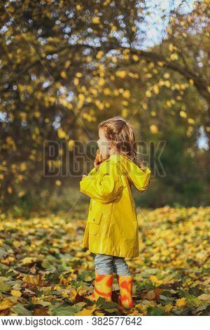 Little Funny Girl In Stylidh Yellow Raincoat, Jeans And Rubber Boots Stands In The Autumn Forest Or