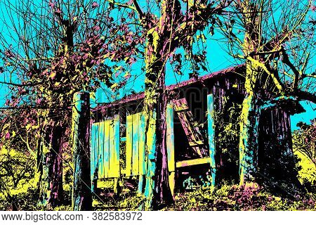 Small Ruined Shack Next To Leafless Plane Trees In Bento Gonçalves. A Friendly Countryside Town In