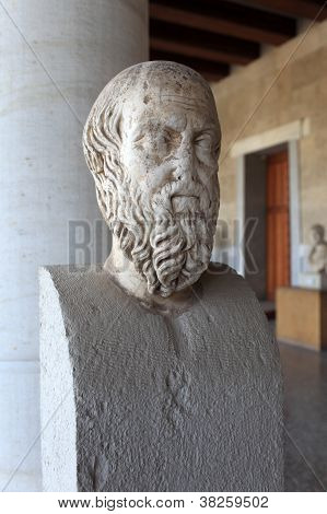 Head Of Herodotus In Museum
