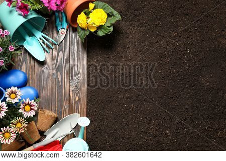 Gardening Tools And Flowers On Wooden Board Near Soil, Flat Lay. Space For Text