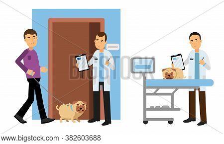 Young Man Bringing His Dog For Vet Examination Vector Illustration Set