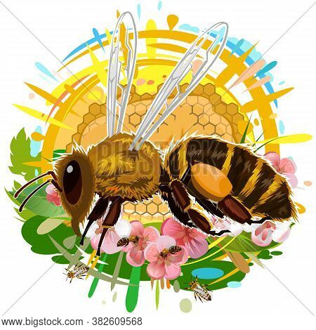 A Bee Flies And Collects Nectar From Flowers. Wax Honeycomb With Honey Streaks. Art. Isolated Vector