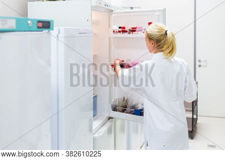 Different Types Of Chemical Solutions Stored In A Refrigeration Cabinet In Life Science Laboratory.