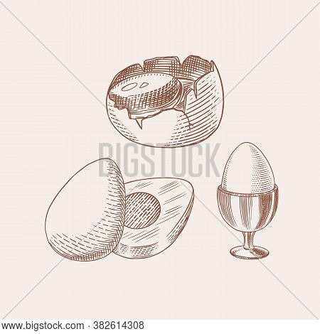 Eggs And And Yolk, Shell And Farm Product. Engraved Hand Drawn Vintage Sketch. Woodcut Style. Vector