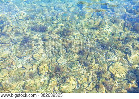 Small Fish On The Bottom In Transparent Sea Water