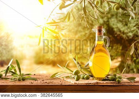 Glass Container With Olive Oil On Wooden Table With Branches And Olives In Crop Field Full Of Olive