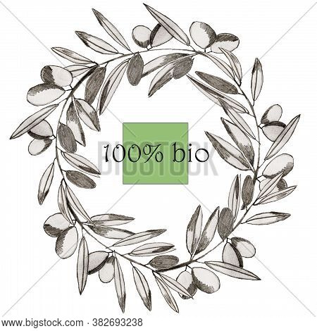 Olive Wreath With Text 100% Bio In Green Square. Olive Branch. Olive Production. Design Element, Log