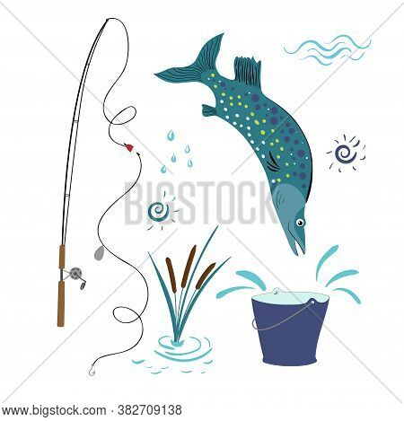 Vector Set For Fishing With A Fishing Rod, Reeds, Big Fish And A Bucket. The Pike Is Jumping Into Th