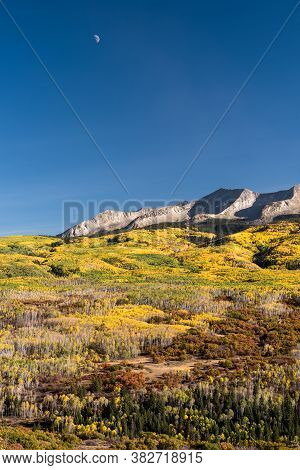 Moon Over West Beckwith Mountain In The Late Afternoon Light Of Autumn, Above The Golden Aspen Trees