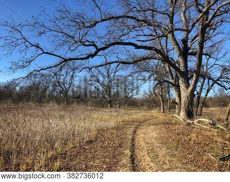 Hiking And Equestrian Nature Trails In Texas On A Beautiful Winter Day