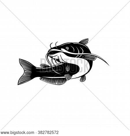 Retro Woodcut Style Illustration Of A Blue Catfish Ictalurus Furcatus, Largest Species Of North Amer