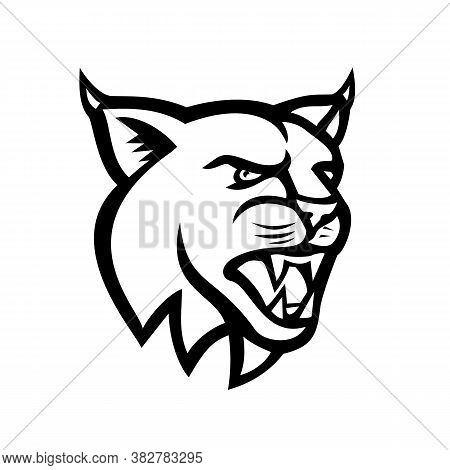 Black And White Illustration Of Head Of A Lynx, Canada Lynx, Eurasian Lynx Or Bobcat,a Medium-sized
