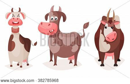 Funny Spotted Cow With Horns Grazing Vector Set