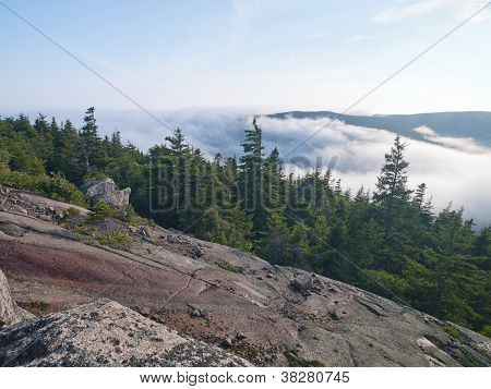 Scenic View Of Steep Cliff With Pine Trees With Mountain Range And Clouds In Background