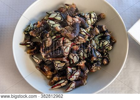 Dish With Barnacles In Traditional Restaurant In Galicia.