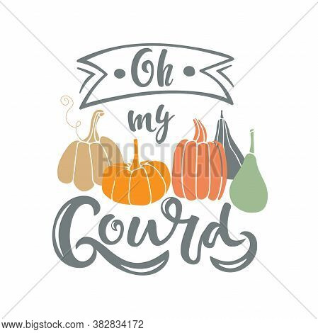 Oh My Gourd With Pumpkin. Hand Sketched Quote Isolated On White Background. Vector Calligraphy Silho