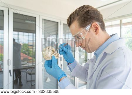 A Western Scientist Man Holding A Human Skull For Investigation In Lab Or Laboratory In Medical, Che