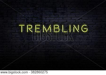Neon Sign On Brick Wall At Night. Inscription Trembling