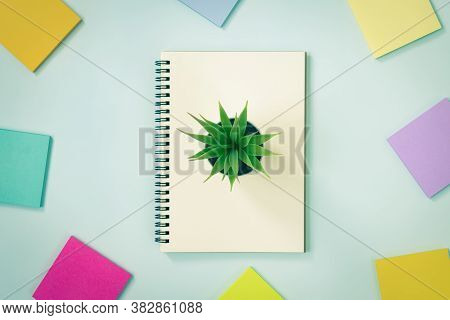 Spiral Notebook Or Spring Notebook In Unlined Type And Multi Color Sticky Note And Office Plant On B