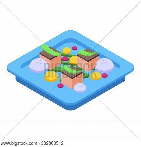 Food Molecular Cuisine Icon. Isometric Of Food Molecular Cuisine Vector Icon For Web Design Isolated