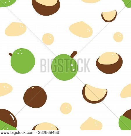 Cartoon Style Macadamia Nuts Vector Seamless Pattern Background.