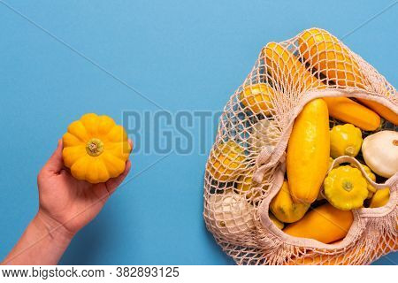 Fresh Harvest Of Zucchini And Pattypan Squash, Yellow Squash In A Food Grid On Blue Background, Woma